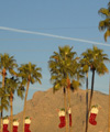 Tuscon Christmas - The stockings were hung by the palm trees with care